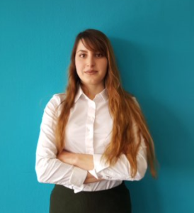 Инструктор на Академијата за Software Testing